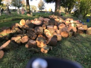 A pile of logs in the churchyard