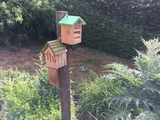 Bug houses on a stick in a garden