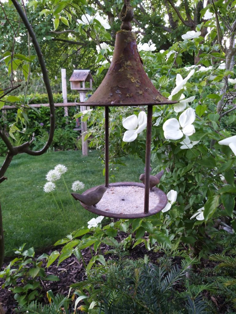 white flowers and a metal bird feeder