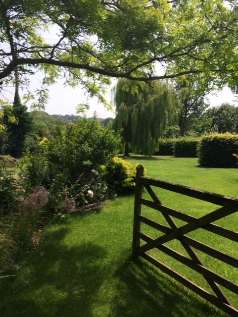 Open wooden gate leading to lawn, flower border and a weeping willow tree