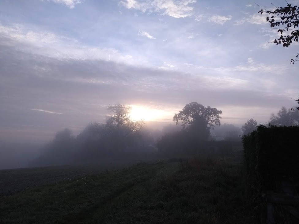 sunshine coming through the mist in the countryside